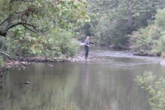Trout-Stream