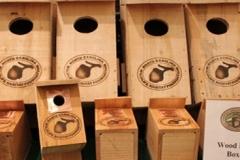 blue-bird-wood-duck-boxes