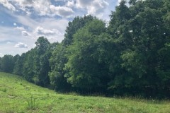 stonebridge-image2